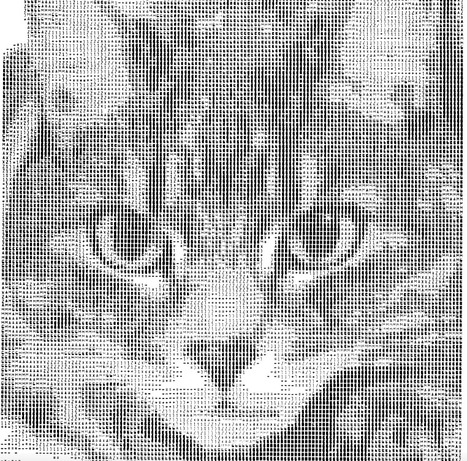 Cat face ASCII Art   ASCII Art   Scoop.it