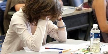 Une nouvelle option pour les élèves de Terminale S : Informatique et Science du ... - ITchannel.info (Abonnement) | DROIT ET INTERNET | Scoop.it