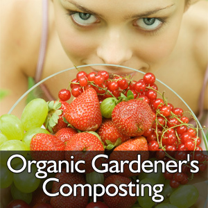 MiniGarden.com - Container Gardening Tips, Information, and News. | Annie Haven | Haven Brand | Scoop.it