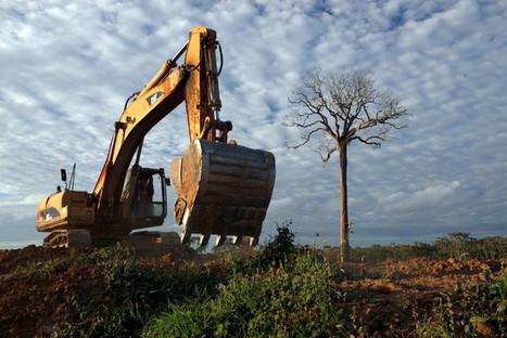 Pour le WWF, l'agriculture dévore la planète | Planete DDurable | Scoop.it