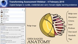 4 February 2015: Digital Badges to curate, credential and carry forward digital learning evidence | Transforming Assessment | Digital Badges and Alternate Credentialling in Higher Education | Scoop.it