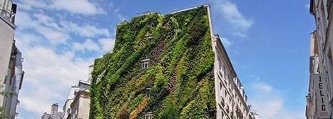 Un jardín vertical tiñe París de verde - Las Provincias | Jardines Verticales y azoteas verdes. | Scoop.it