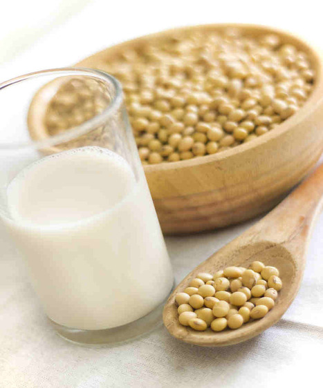 Soy Milk Kefir - BenefitsOfKefir.com | No Fear of Kefir Grains | Food and Health | Scoop.it