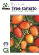 New descriptor now available for tree tomato | Agricultural Biodiversity | Scoop.it