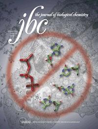 Alzheimer: quando il DNA non viene riparato | Med News | Scoop.it