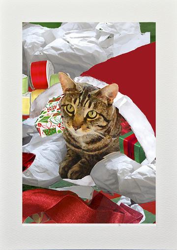 Handmade Cat Christmas Card: Cat In Santa's Sack | Deborah Julian Art | Christmas Cat Ornaments and Cards | Scoop.it