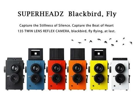 » Blackbird, Fly Toy Camera | foteka | Scoop.it