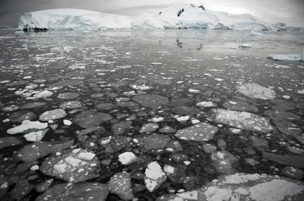 Pôle sud : la concentration de C02 à son plus haut niveau depuis 4 millions d'années | Ecologie & société | Scoop.it