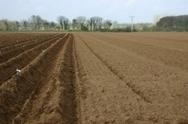 Journée mondiale des sols : l'Inra dresse un panorama des recherches sur sols et agroécologie   EntomoNews   Scoop.it