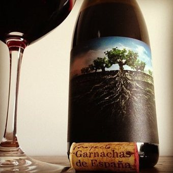 La #Garnacha Salvaje del Moncayo 2011 - Garnachas de España | @zone41 Wine World | Scoop.it