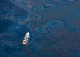 Speeding up nature's oil spill cleaners - Youris.com   Marine Eco-System Biology #Marine #SysBiol #Ecosystem   Scoop.it