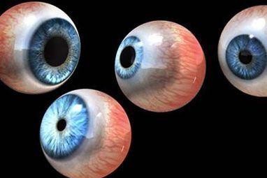 Des imprimantes 3D pour GUÉRIR les aveugles | Machines Pensantes | Scoop.it