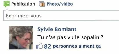 Accepter sa mère sur Facebook, pas une bonne idée! | #VeilleDuJour | Scoop.it