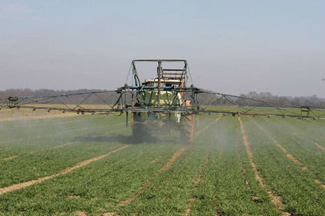 Les pesticides chimiques sur la sellette | Sustainable agriculture | Scoop.it