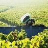 Planet Bordeaux - The Heart & Soul of Bordeaux