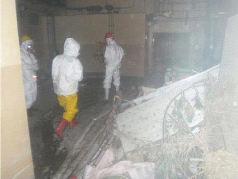 Japon: le périple d'un ancien ouvrier de Fukushima | L'Express.fr | Japon : séisme, tsunami & conséquences | Scoop.it