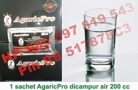 Penyebab Darah Beku dan Cara Penyembuhannya   AgaricPro Herbal Alami   Dede AgaricTop   Scoop.it