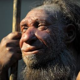 Can Neanderthals Be Brought Back from the Dead? | It is all a Journey. | Scoop.it