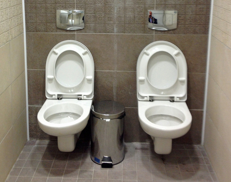 The mystery of the double toilet | Travel Bites &... News | Scoop.it