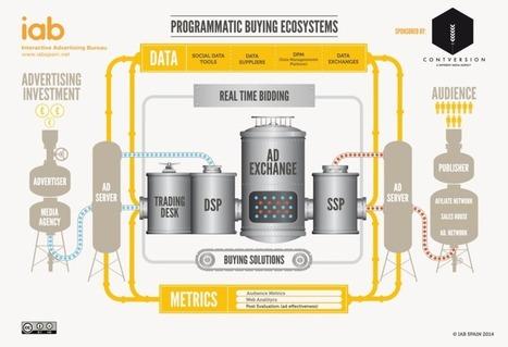 INFOGRAPHIC : Programmatic Buying Ecosystems | Les Enjeux du Web Marketing | Scoop.it