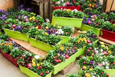 Des jardinières pour toutes et tous... | The Blog's Revue by OlivierSC | Scoop.it