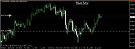 WINNERFOREX1 : Aud/Nzd: Cambio di rotta! | Forex Trading | Scoop.it