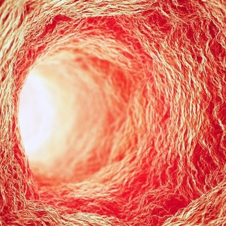 Bioprinted blood vessels pave way to organs-on-demand (Wired UK) | Health & Science | Scoop.it