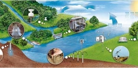 Une plante préhistorique contre le réchauffement | Biodiversité | Scoop.it