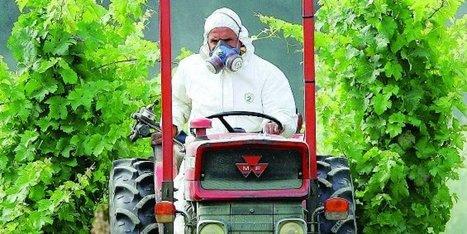 Pesticides en Charente : « Tout ce cirque médiatique est anxiogène » - Sud Ouest | Le Fil @gricole | Scoop.it