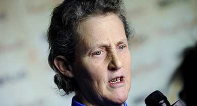 Temple Grandin on a New Approach for Thinking About Thinking | Communication and Autism | Scoop.it