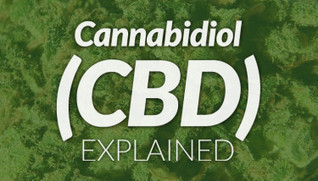 Cannabidiol (CBD): Fighting Inflammation & Aggressive Forms of Cancer | medical marijuana | Scoop.it