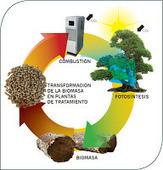 Energías renovables (XI). Biomasa | Diario de la Tecnologia | Scoop.it