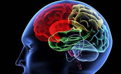 Inteligencia emocional | Comunicaciónline | Scoop.it