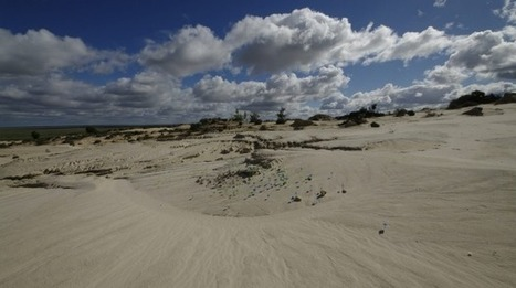 Giant Lake Mungo was 20 per cent bigger than we thought, say researchers | Teaching history and archaeology to kids | Scoop.it