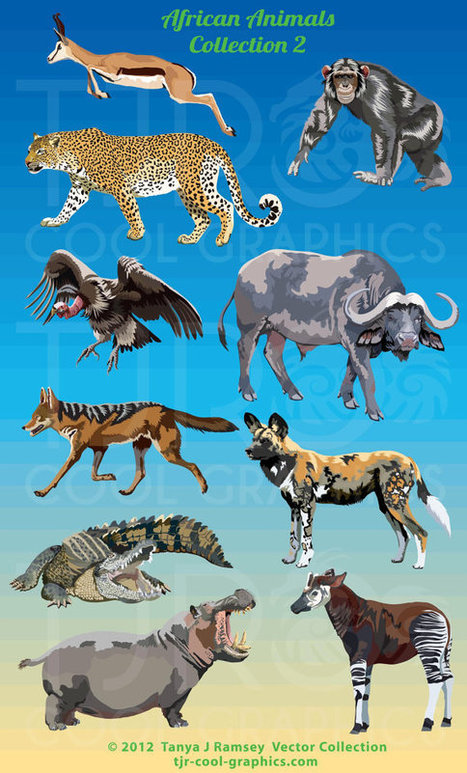 African Animals Collection 2 - Clip Art | Africa | Scoop.it