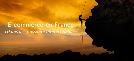 Blog ecommerce Wizishop - Conseils et actualités | Dominique Choisel | Scoop.it