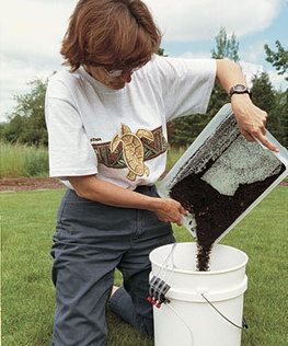 Brewing Compost Tea - Fine Gardening Article | OrganicComposting | Scoop.it