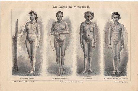 1894 shape of woman original antique anatomy print human form | Antiques & Vintage Collectibles | Scoop.it