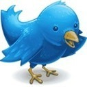 A Beginner's Guide to Twitter | Why Twitter for Teachers? | Scoop.it