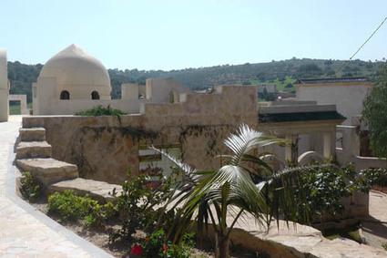 Sidi Amor: une oasis écologique au cœur de la Tunisie | Des 4 coins du monde | Scoop.it