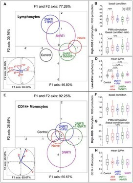 "HIV-1 Infection and First Line ART Induced Differential Responses in Mitochondria from Blood Lymphocytes and Monocytes: The ANRS EP45 ""Aging"" Study 