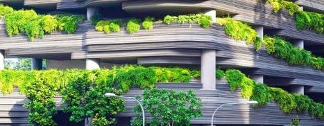 La re-naturalización de nuestras ciudades   Blog CARTIF   Smart Cities in Spain   Scoop.it