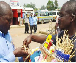 Kakamega farmers go regional with hangover curing herb   Sustainable agriculture in ACP countries   Scoop.it
