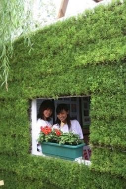 Des toitures vertes pour réduire la pollution à Pékin | Immobilier | Scoop.it