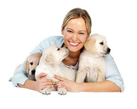 Important Tips to Consider When Buying Pets | Pets - Buy Pets Online | Scoop.it