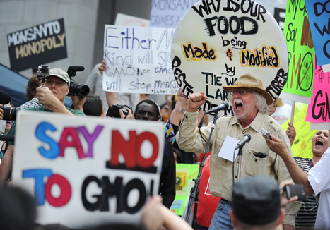 '#JOIN Class-Action Lawsuit re. #Monsanto hit with #GMO wheat case Extreme Toxic Carcinogenic' | News You Can Use - NO PINKSLIME | Scoop.it