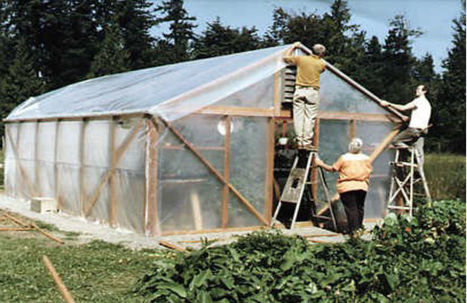 Backyard greenhouses | CALS in the News | Scoop.it