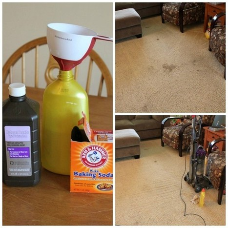 The Best Carpet Cleaner, EVER! | Fun DIY Creative Ideas and Crafts | Scoop.it