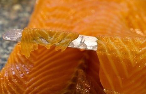 Le saumon frais moins contaminé qu'avant, contrairement au bio | Ifremer | Scoop.it