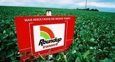 Des OGM inoffensifs ? | Toxique, soyons vigilant ! | Scoop.it